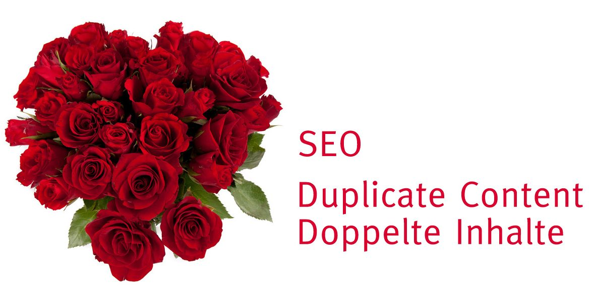 duplicate content by thomas Hezel